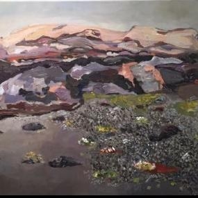 Surtsey-tuff and colonisation in sand