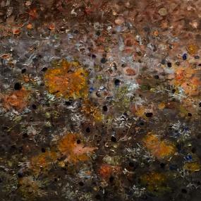 Surtsey-lichens