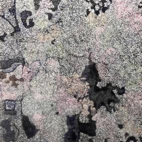 Surtsey earth